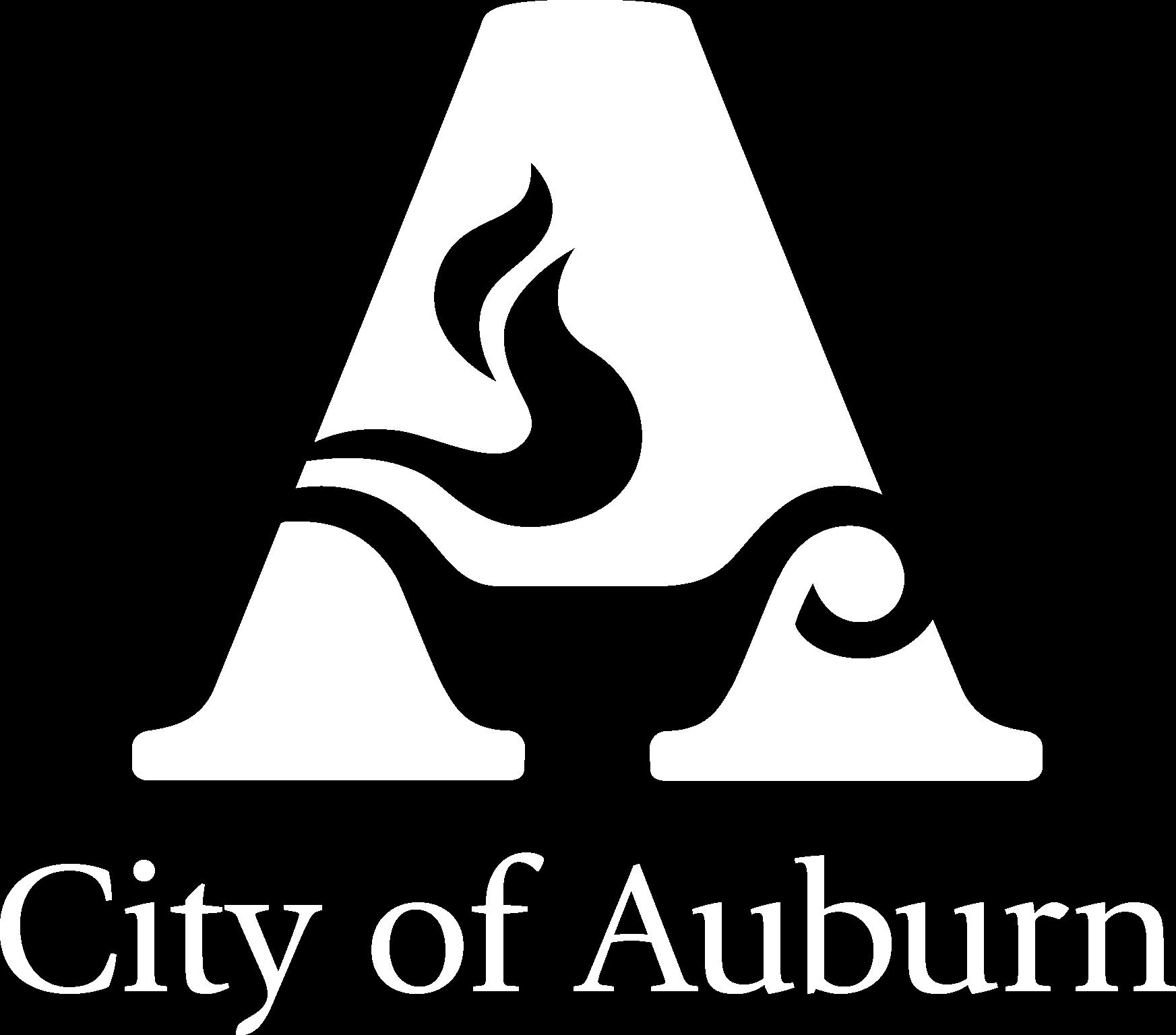 drivers license test auburn alabama