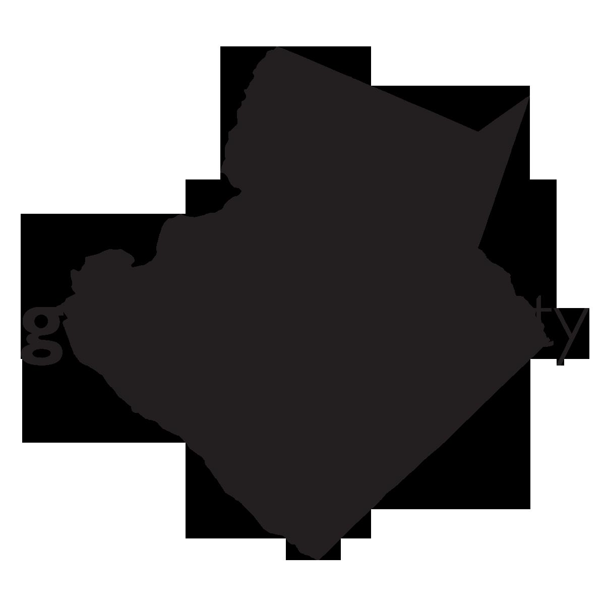 job opportunities gwinnett county government gwinnett county government