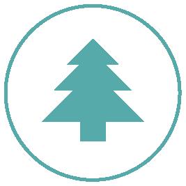Forestry JobsTravels with Luna   Travels with Luna Home Design Resume CV Cover Leter     resume template senior project manager resume skills junior
